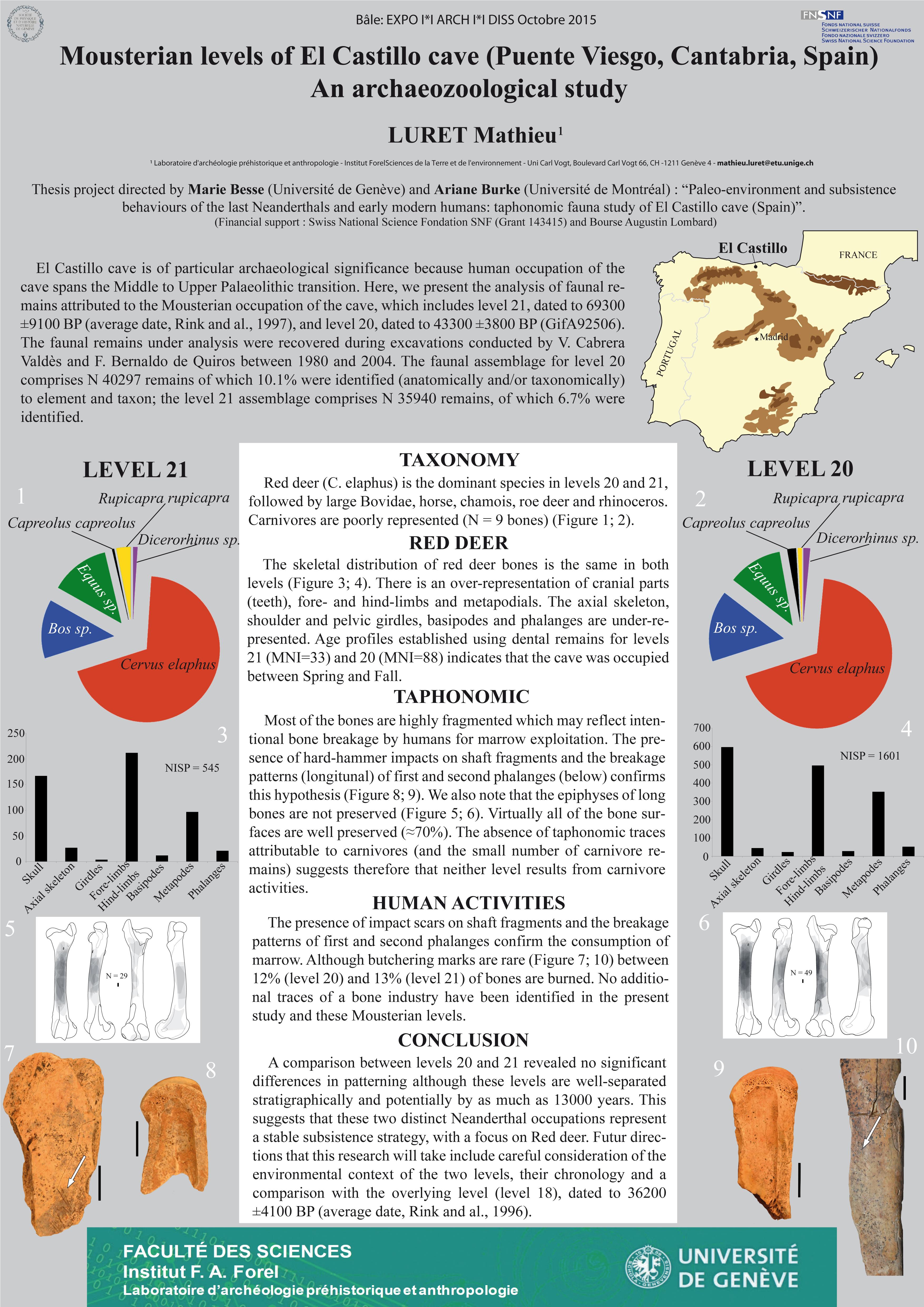 Mathieu LURET: Mousterian levels of El Castillo cave (Puente Viesgo, Cantabria, Spain). An archaeozoological study.